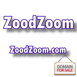 دامنه زود زوم ZoodZoom.com