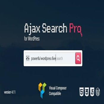 افزونه  Ajax Search Pro v4.13.4 – Live WordPress Search & Filter Plugin